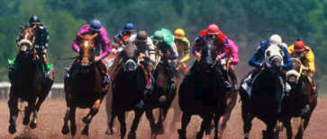 Horse Race Handicapping Basics